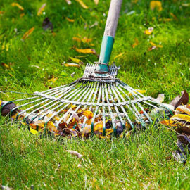 Garden Maintenance - Harveys Grounds Maintenance Cannock, Staffordshire